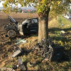Srna skrížila cestu vodičovi, nehoda skončila tragicky